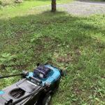 充電式芝刈り機で雑草を刈る
